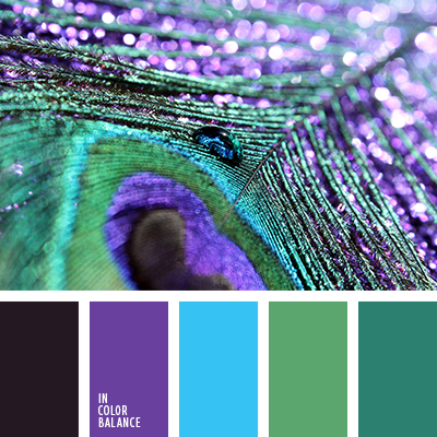 Peacock Colour Palette